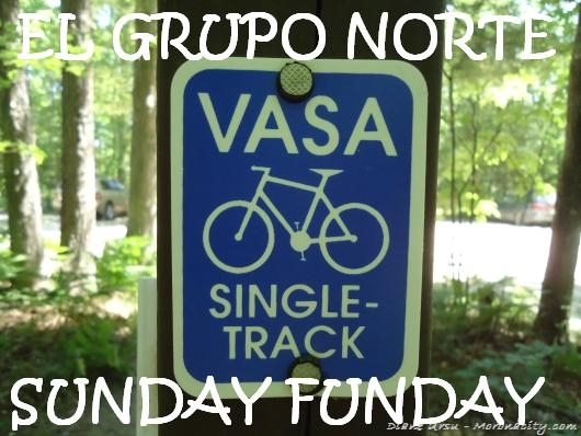 Vasa-Singletrack-Sign